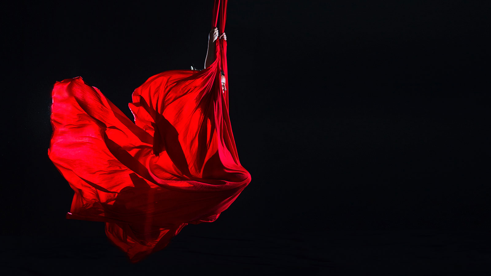 Flamenco Danza Aérea